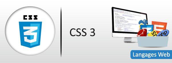 css-3